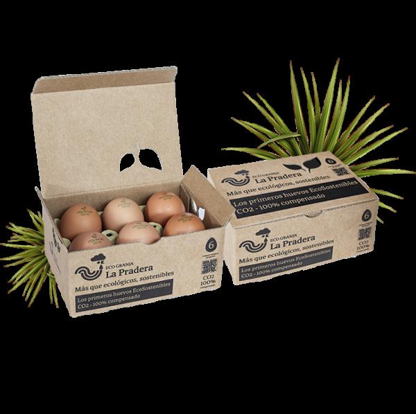 Media docena de huevos frescos ecológicos